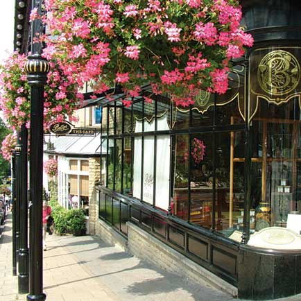Floral Harrogate Page 1 Bettys Tea Shop